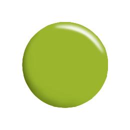 ピスタチオグリーン CGGR03S